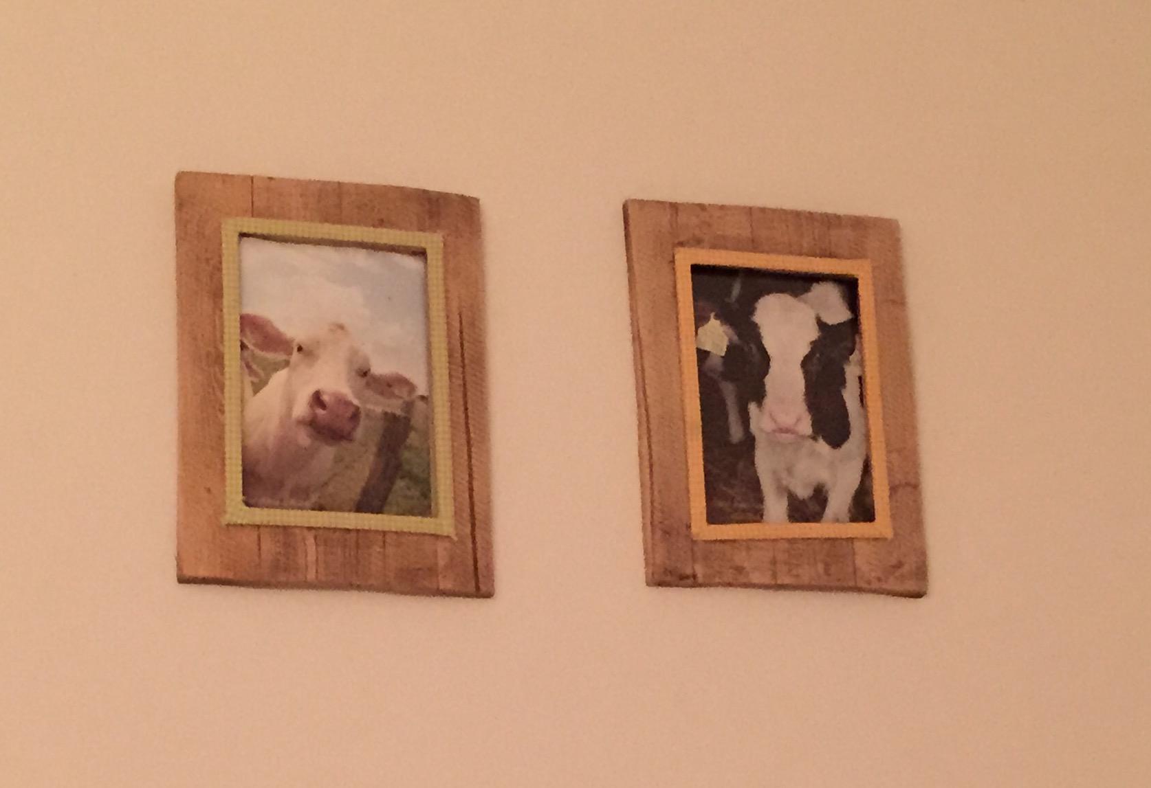 Lehmad - magamistoa seinal !?